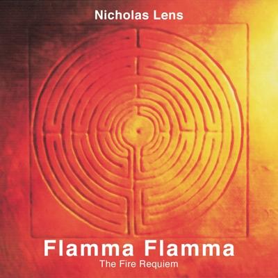 Flamma flamma santiago chotsourian for Que quiere decir contemporaneo
